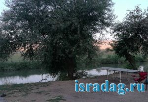 1. Дикое место на реке Иордан в Израиле