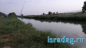 Дикое место на реке Иордан в Израиле - 2