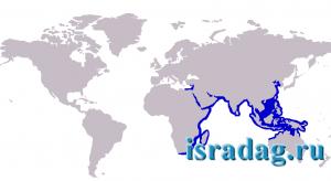 3. Распространение рыбы Телевизия (Silago sihama). Источник - wikimedia.org. 2007 год. Автор - Kare Kare