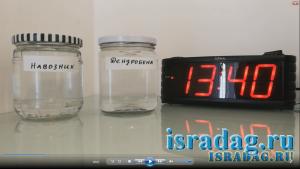 Дендробена и навозник против соленой воды Средиземного моря