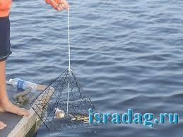 Фотография одног из способа ловли голубго краба при помощи краболовки