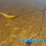 Фотография отводного поводка под водой