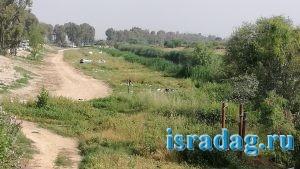Горы мусора после праздников на берегу реки Иордан