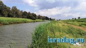 Израиль. Апрель 2017. Река Иордан вниз по течению от моста ахамиша - гешер ахамиша