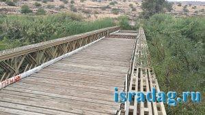 Мост Арик (Гешер Арик). Место для рыбалки на реке Иордан. Израиль