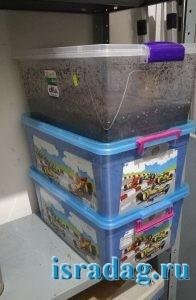 Пластиковые ящики, которые я использую для выращивания червя Дендробена