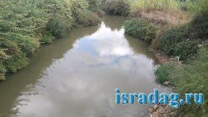 Вид реки Иордан открывающийся с моста Арик. Израиль.